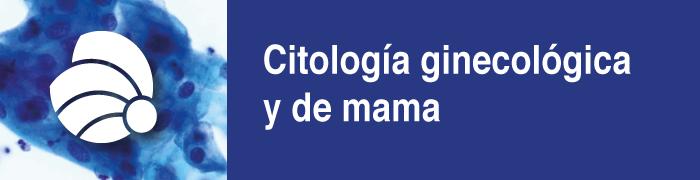 B1 citología gine y de mama